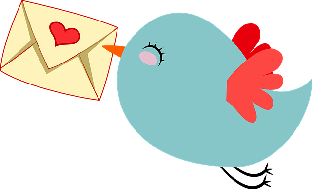 CloudOffix Marketing Cloud - Email Marketing